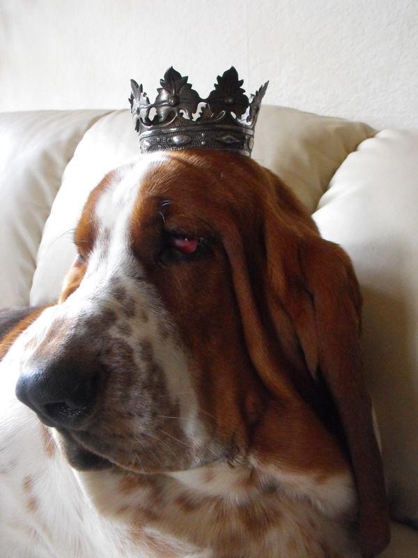Le roi Emil