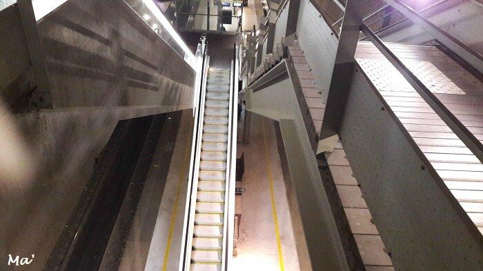 161206_escaliers_gare