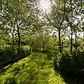 Après midi détente au jardin