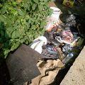 ordures_6 (3)