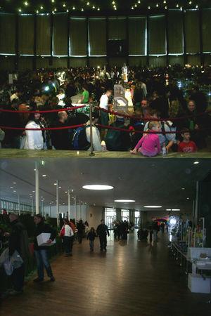 Bourse aux reptiles Karlsruhe 05