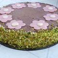 Entremets framboises chocolat coco et croustillant pistache