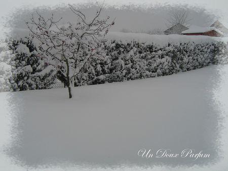 février 2013 006