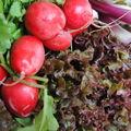 Salade du marché