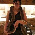Celine et le python