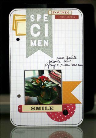 7-Smile