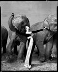 ph_avedon_dovimawithelephants