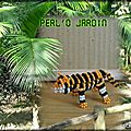 Tigre du Bengale blog