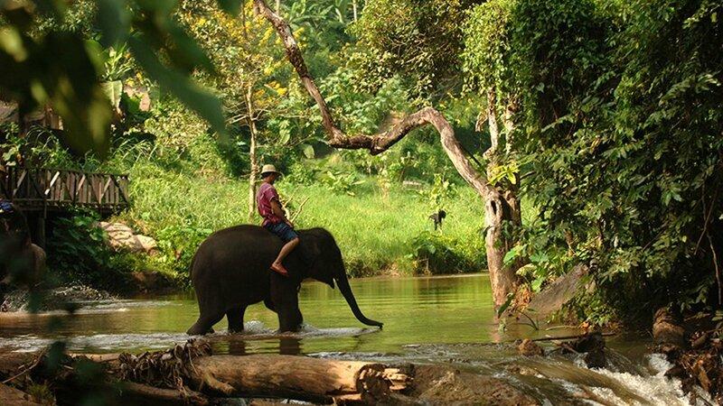 thailande-chiang_mai