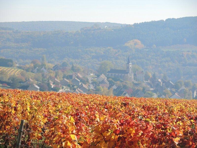 Arcenant, vignes et village