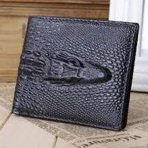 Portefeuille magique d'argent