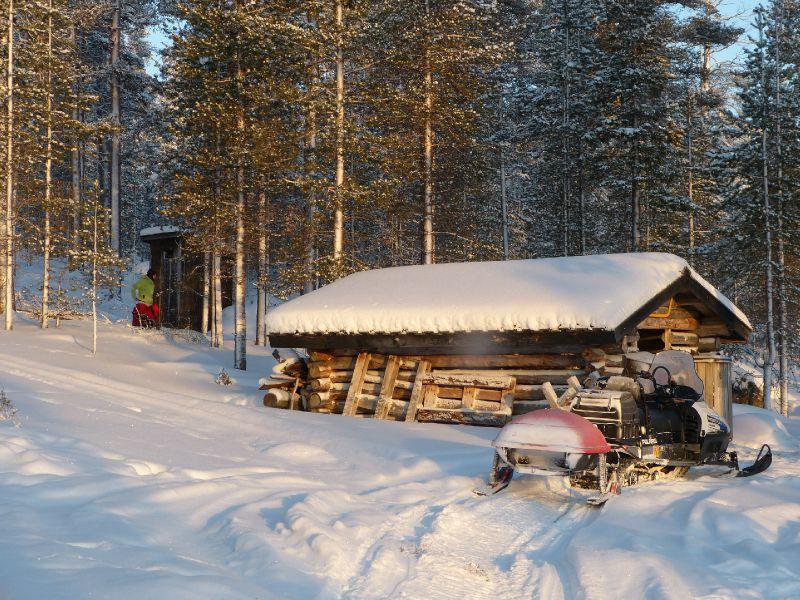 La cabane au milieu de la forêt