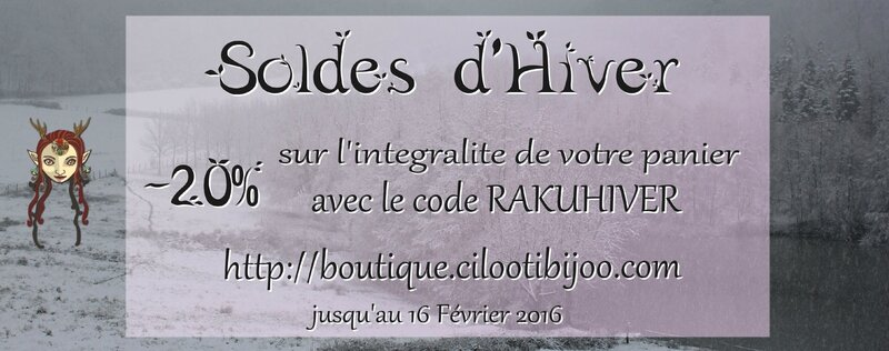 Ban Soldes Hiver 2016 b