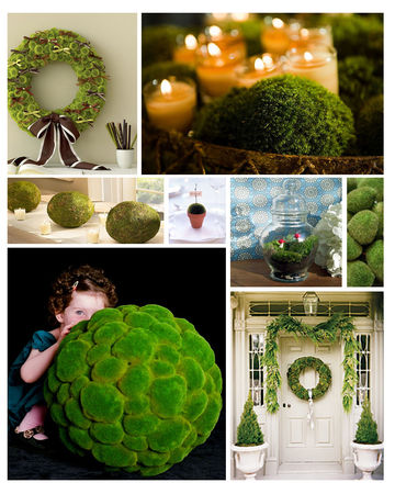 centerpiece_idea_moss_large