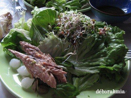 salade_maquerau_graines_germ_es