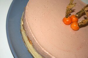 mousse_framb_passion_1
