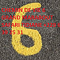 Signification du chemin de vie 6 grand marabout d'afrique et du monde marabout en france, suisse, luxemborgue papa safari