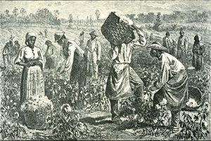 esclavage8