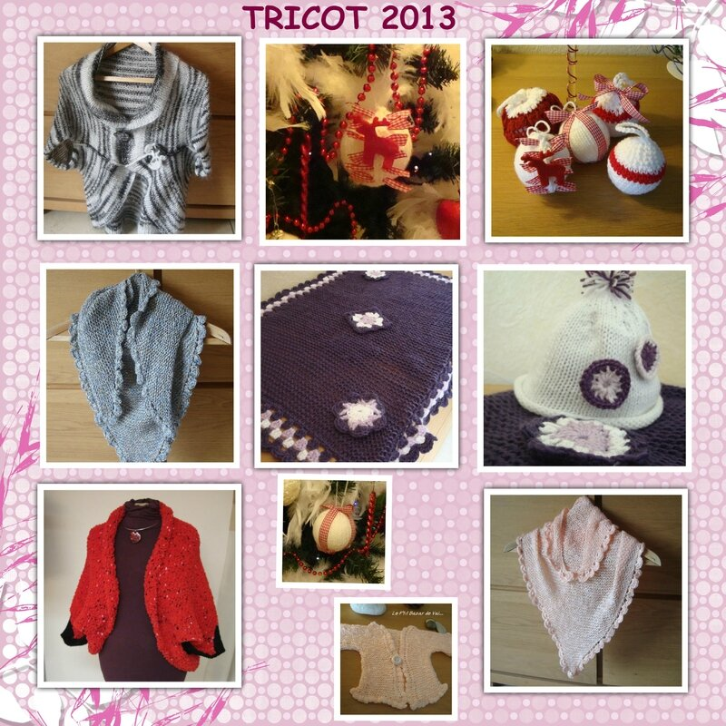 TRICOT 2013