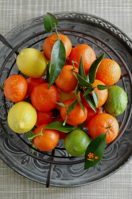 Citrons & clémentines