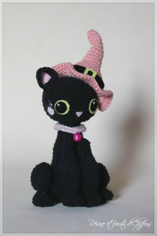 IMG_1954_Kitty