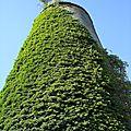 Moulin à vent de pommeroeul