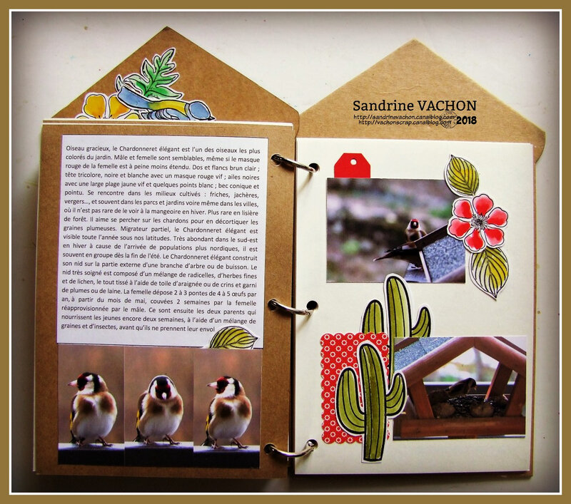 Mini album LES OISEAUX DE MON JARDIN Sandrine VACHON (18)