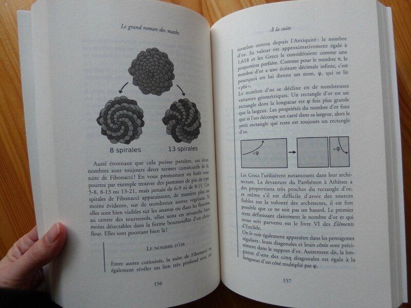 Le grand roman des maths 2
