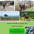 16 sept 2017 - journée de la traction animale - lebreuil sur couze (63)