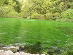 Fontaine_Vaucluse_18_avril_2008__14_
