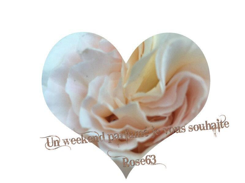 Au coeur d'une rose