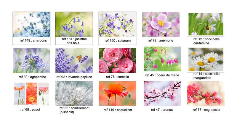 cartes fleurs1