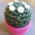 Gros cactus en grosse laine #cpf0000138