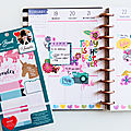 Plan with me special semaine - lucile de jolies choses