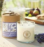 ws15_products_home_fragrances_candlemelts_brighter_world_01