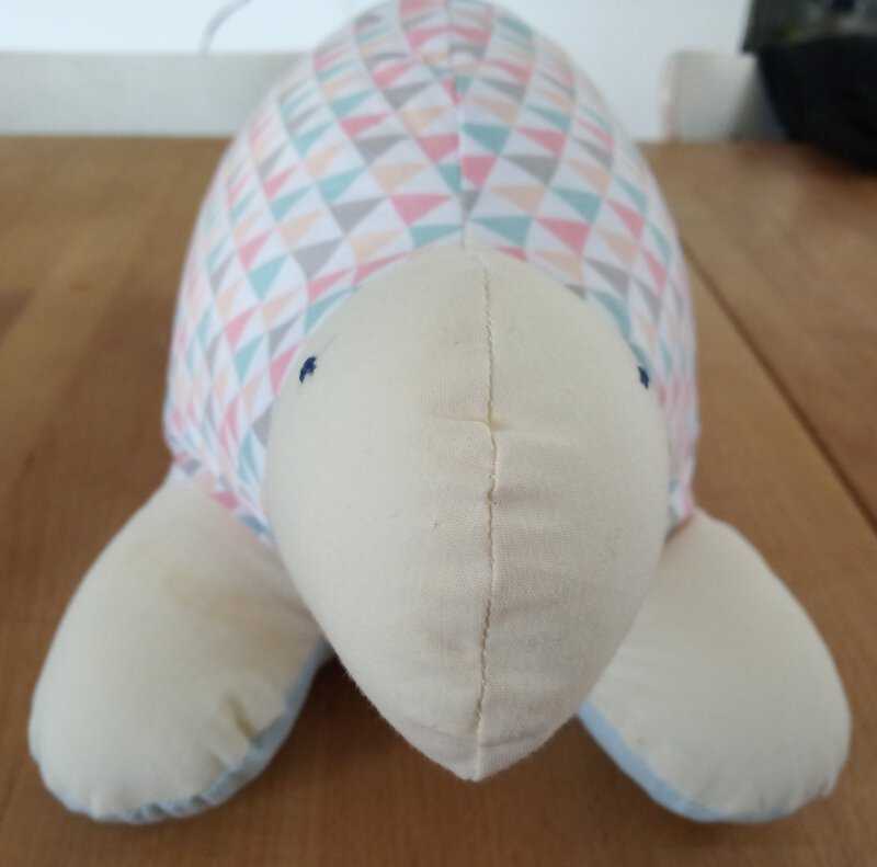 tortue (4)