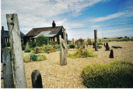 20070102211230_Dungeness_garden