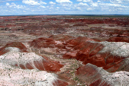 Petrified_Forest_35