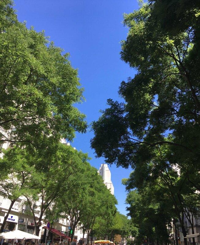 3-les-puces-du-canal-ma-rue-bric-a-brac