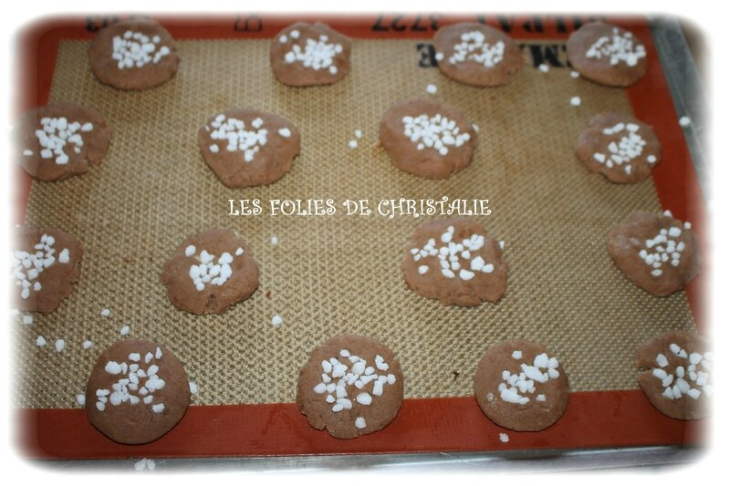 Biscuits choco 4