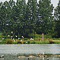 Lac de Tastoa 2806168
