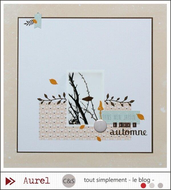 130917 - Dans mon jardin c'est l'automne - Combo #1_blog