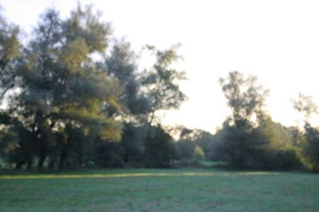 20101001_006