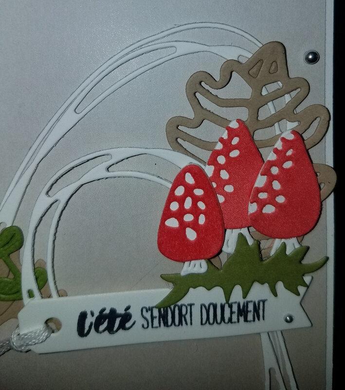détails champignons