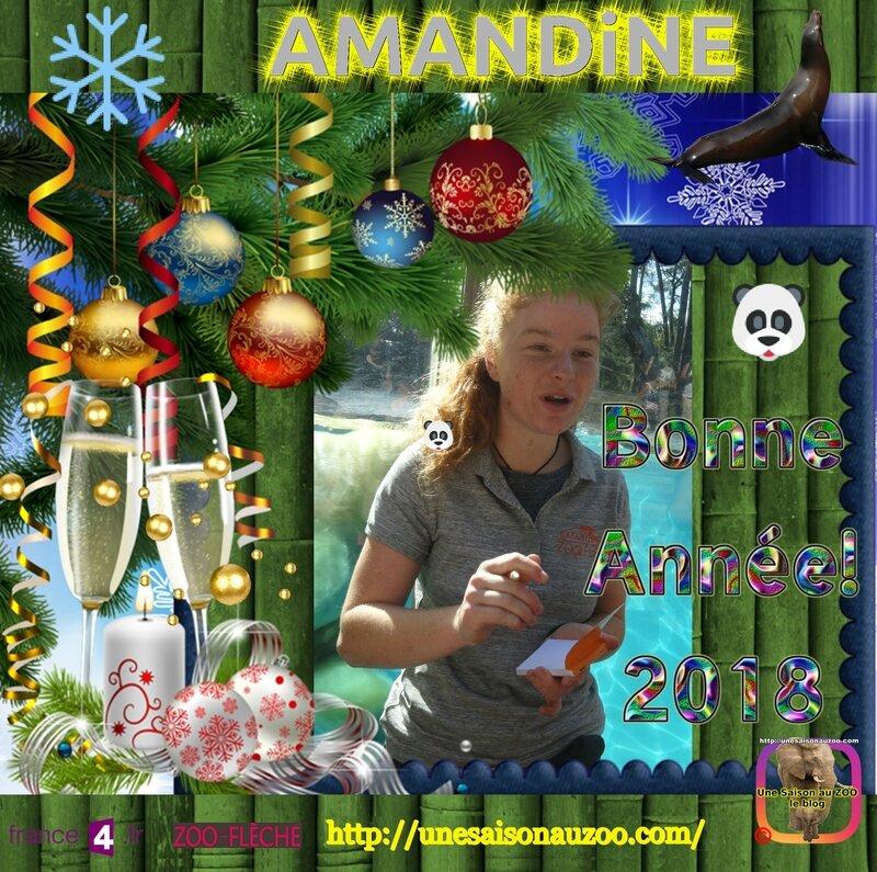AMANDiNE 0 Nouvelle an 2018