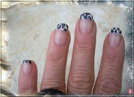 leopard_french3