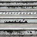 escalier, fleur urbaine_1787