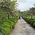 Une collection d'arbres à l'abri de l'agglomération environnante