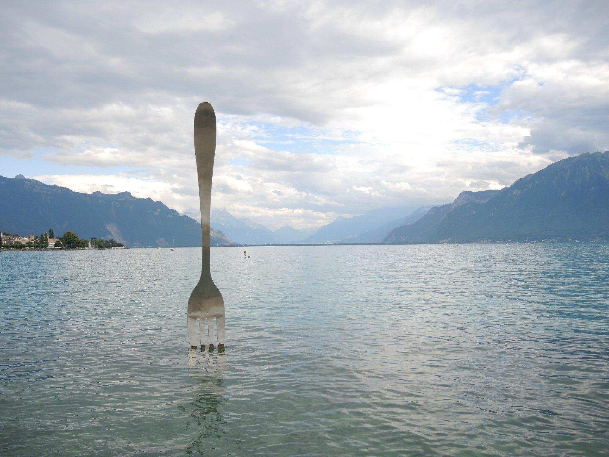 Corsier-sur-Vevey, rives du lac Leman, la fourchette (Suisse)