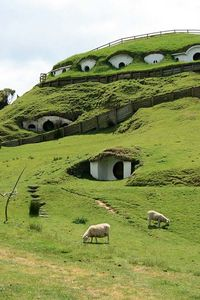 __new_zealand___The_Lord_of_the_Rings_Hobbit_House_New_Zealand1